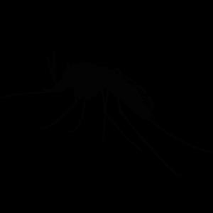 Schwarze Silhouette einer Stechmücke, Bild dient als Icon